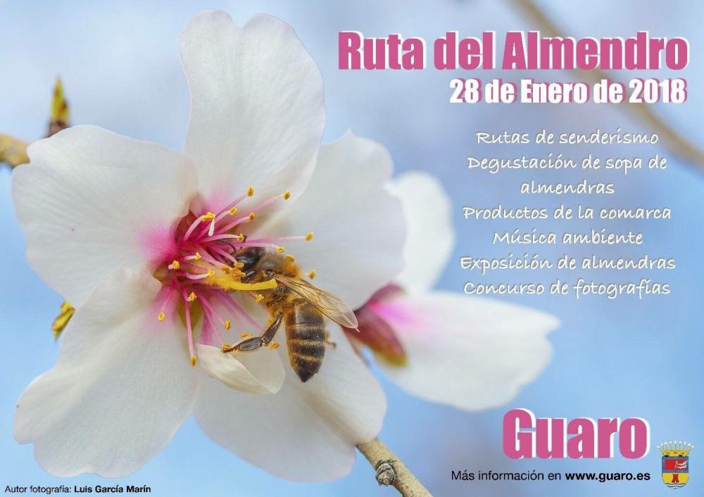 Florecen los almendros de Guaro