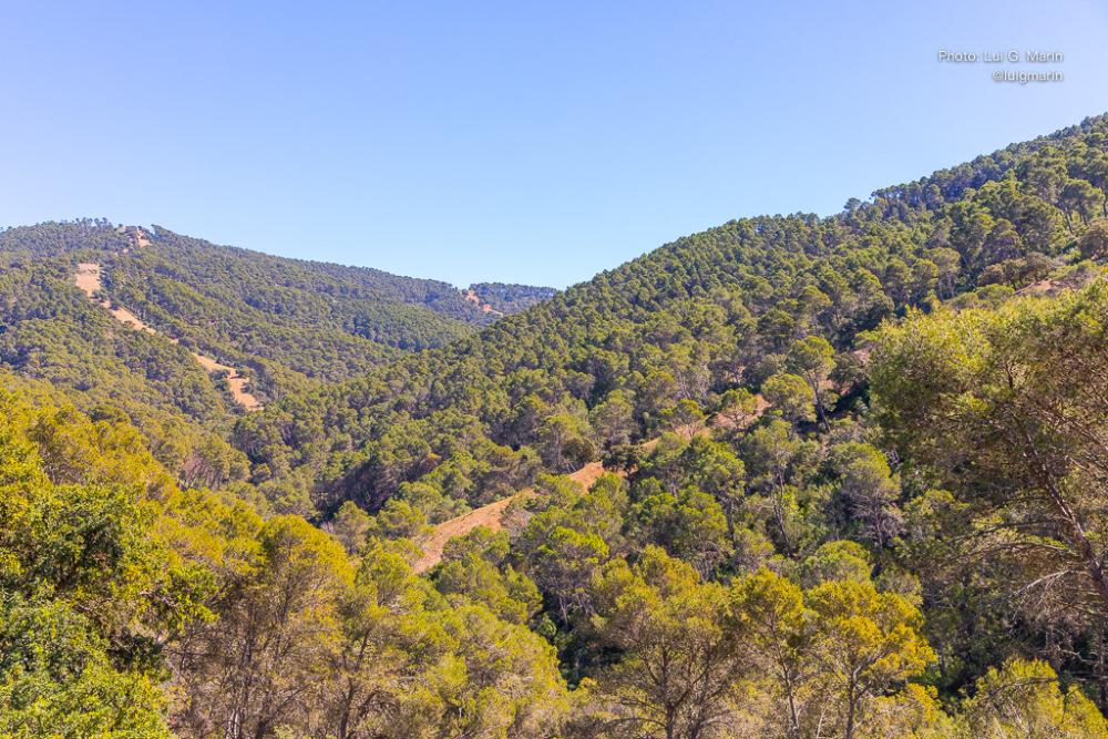 Ruta por los Montes de Málaga