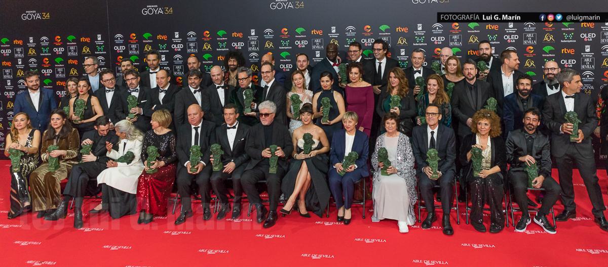 Premios Goya 34 edición, Málaga