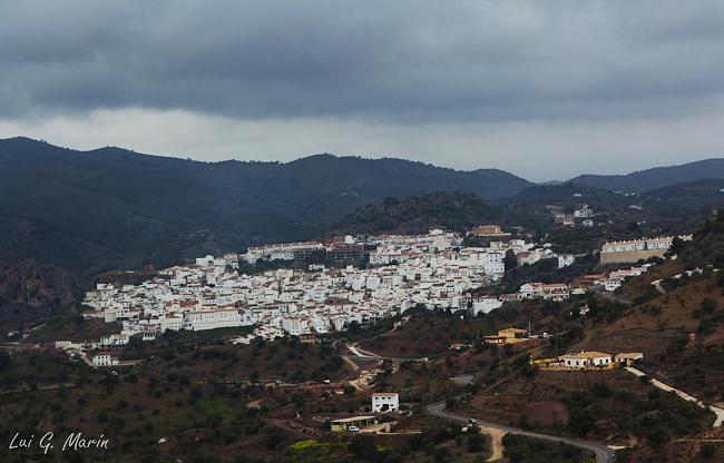 Una red social en Almogía